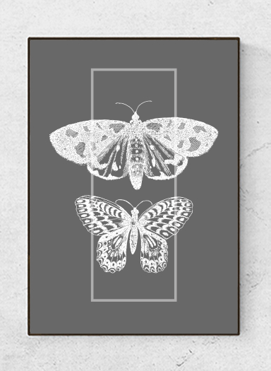 Art poster Insects, black/white, starting at 9.90€