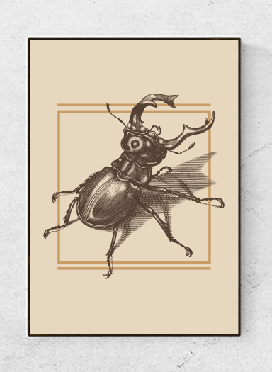 Art poster Insects, brown, starting at 9.90€