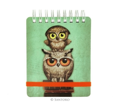 Book Owls Pocket Notebook