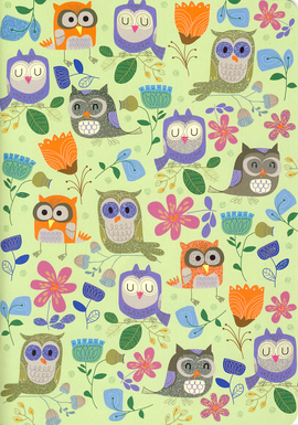 "Notebook ""Owls"""