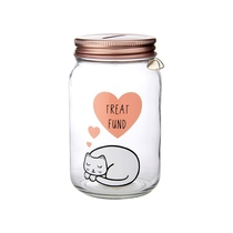 Money box in a gift package, Cutie Cat Treat