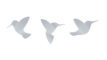 Umbra Humminbirds wall decorations, white